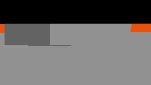Logo NetNames
